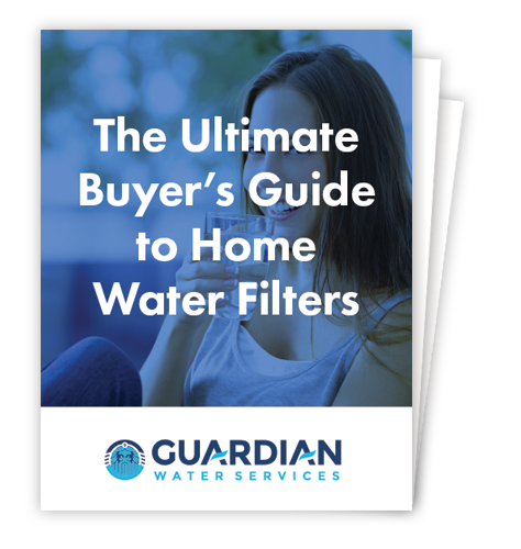 Ultimate Buyer Guide Home Water Filters