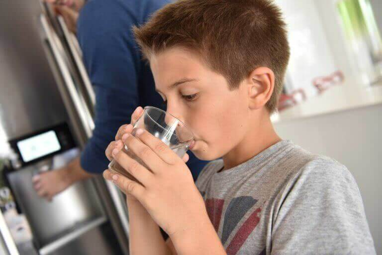 Child enjoys clean water from fridge on a whole house water filtration system